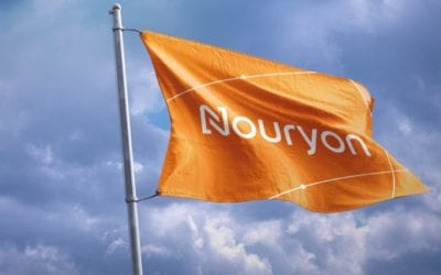 Nouryon to Sell Salt Specialties Business to Salins Group
