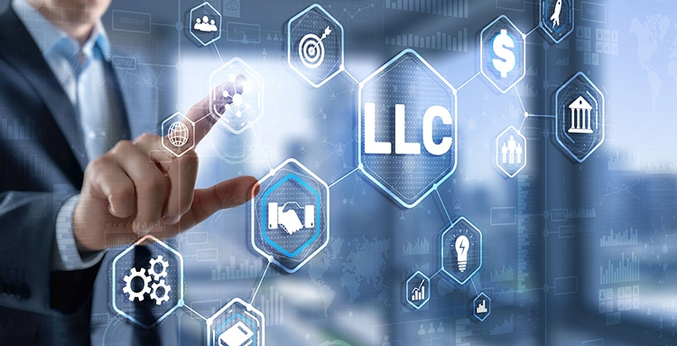 Limited Liability Company concept.